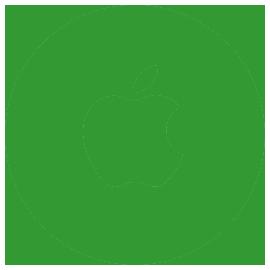 Anydesk-Apple